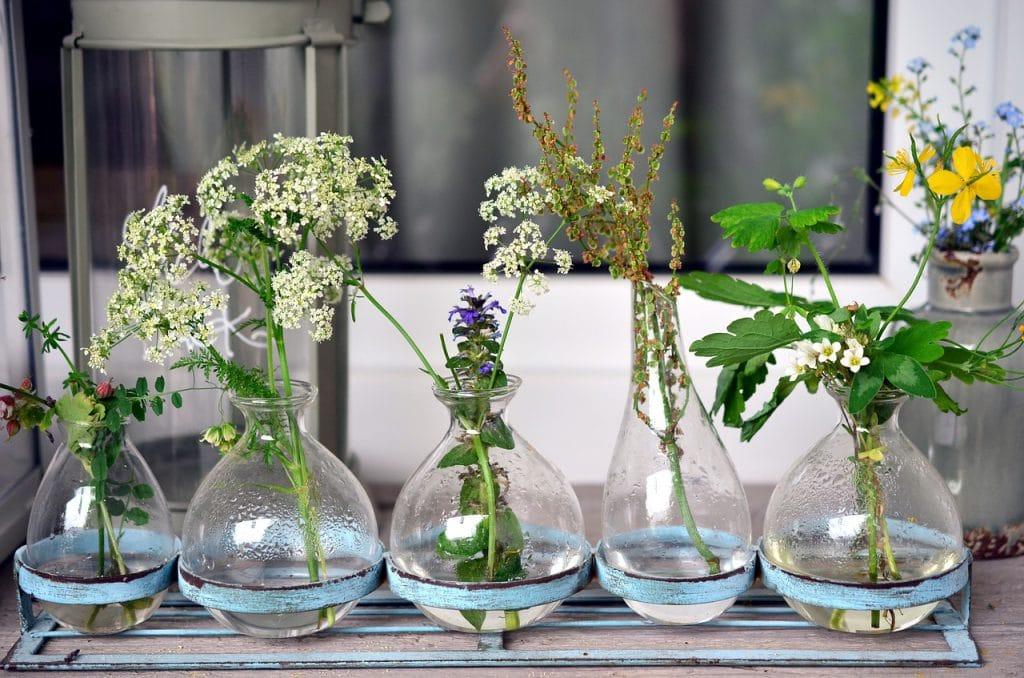 Wald- und Wiesenblumen in Sachkunde